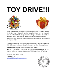 TOY DRIVE-1